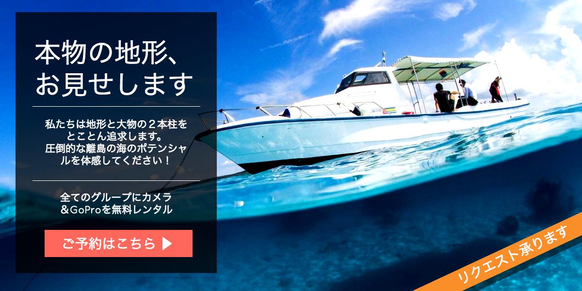 宮古島ダイビングショップのCTA画像