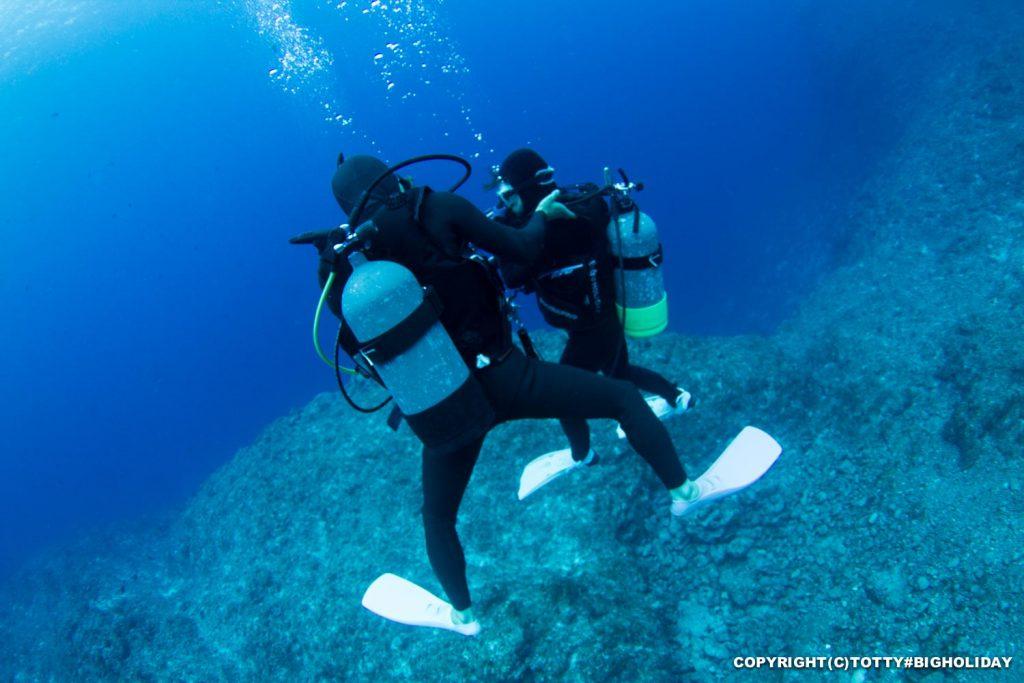ダイビング求人写真