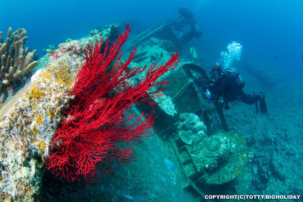 宮古島ダイビングポイント:沈船