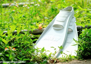 ボートダイビング用フィンのおすすめ|愛用の靴のように