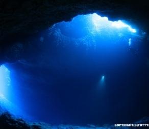 とあるスーパーフォトガイドの水中写真の秘訣