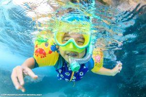 大人も子供も夏休み!ハイシーズン真っ只中の宮古島ダイビング情報