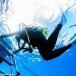 宮古島ダイビングエリア透明度事情『一年で1番、水が綺麗なのはいつ?』