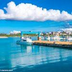 ダイビング港の風景