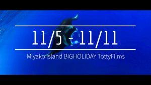 【11/5〜11/11】THIS WEEK'S BIGHOLIDAY