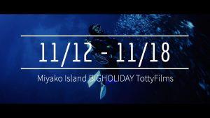 【11/12〜11/18】THIS WEEK'S BIGHOLIDAY