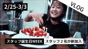 【2/25〜3/3】THIS WEEK'S BIGHOLIDAY
