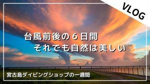 【9/9-9/15】THIS WEEK'S BIGHOLIDAY