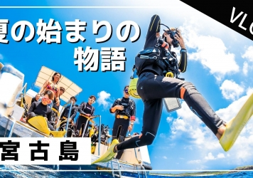 【7/1-7/7】THIS WEEK'S BIGHOLIDAY