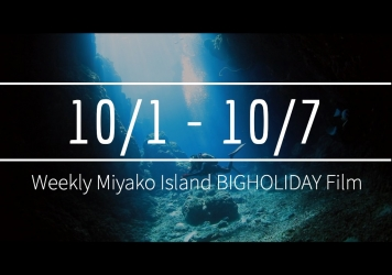 【10/1〜10/7】This week's BIGHOLIDAY