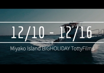 【12/10〜12/16】THIS WEEK'S BIGHOLIDAY