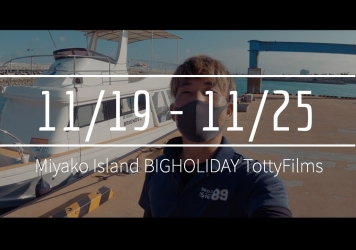 【11/19〜11/25】THIS WEEK'S BIGHOLIDAY