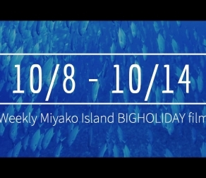 【10/8〜10/14】This week's BIGHOLIDAY