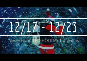 【12/17〜12/23】THIS WEEK'S BIGHOLIDAY